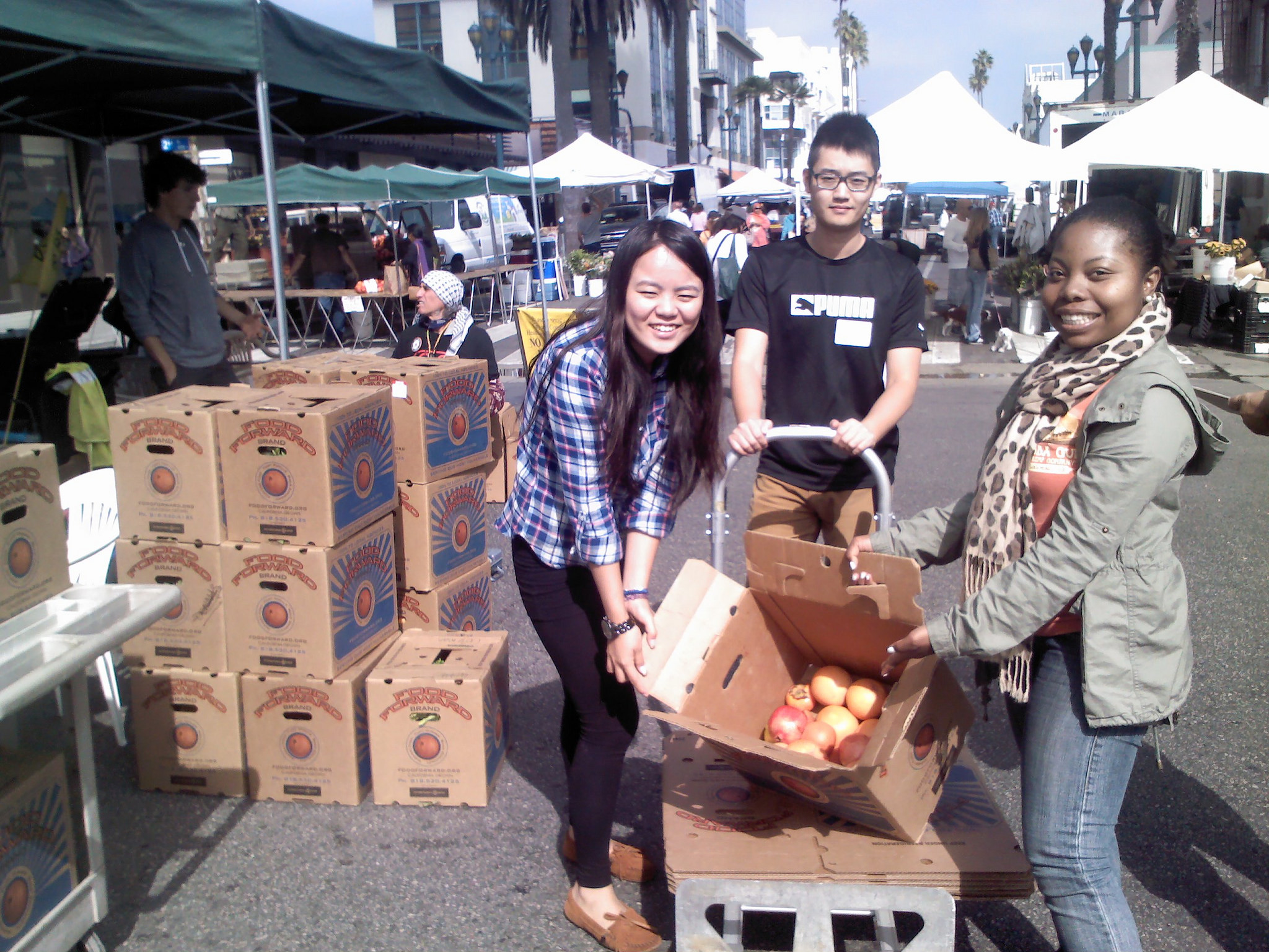 Our volunteers show off a healthy haul
