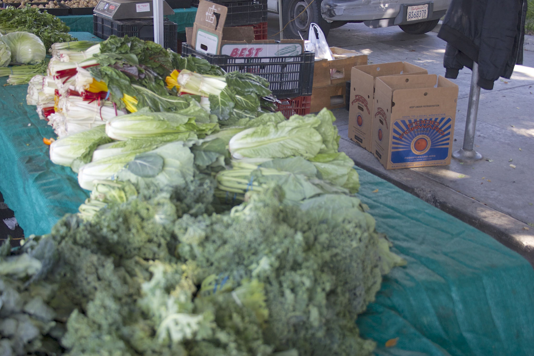 A table full of veggies at the farmers market
