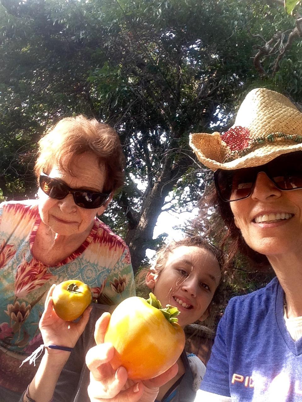 Family Fruit Pick!