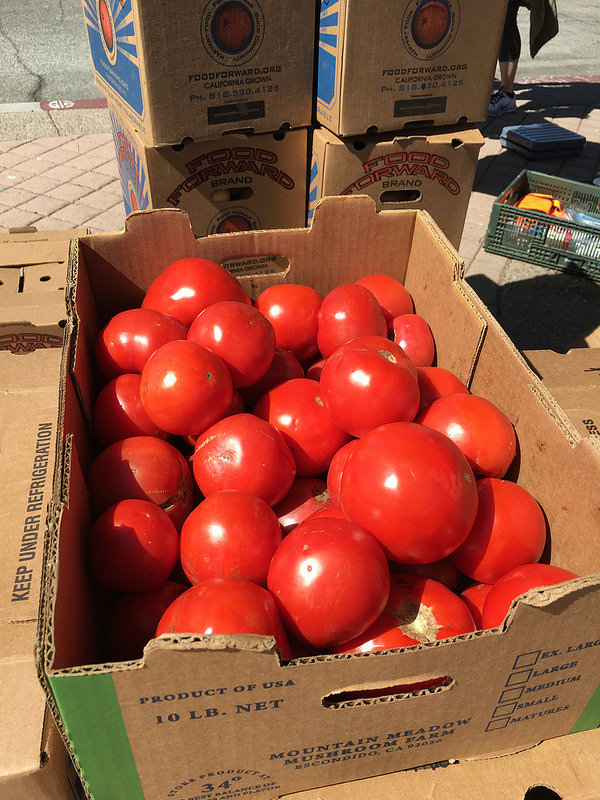 A box full of tomatoes from the Farmers Market
