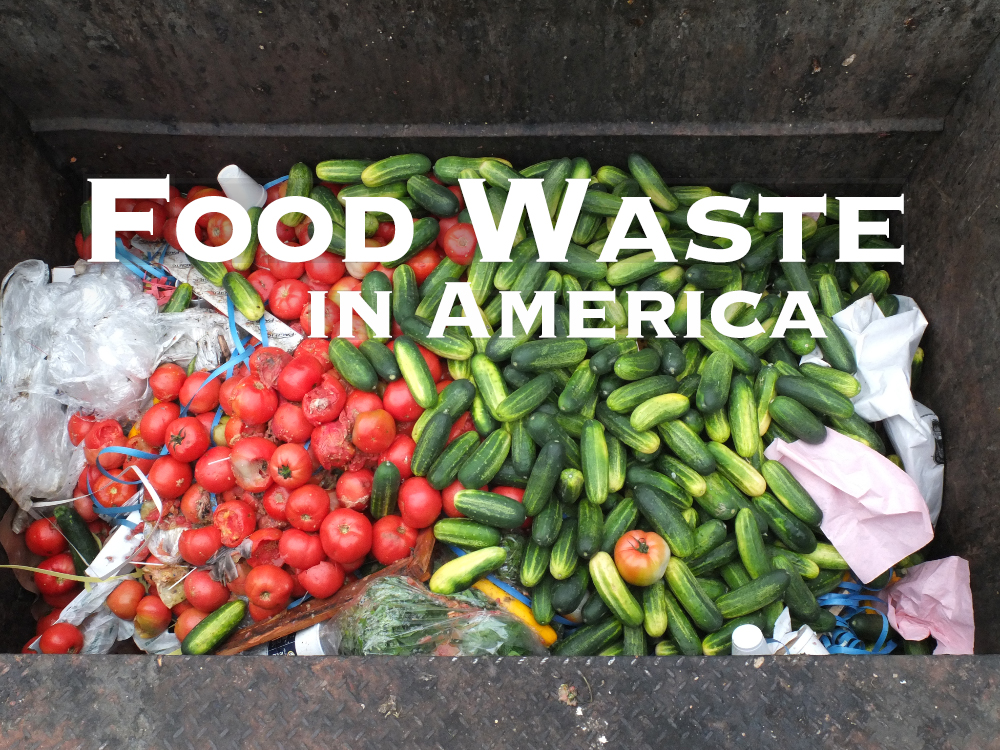 """Picture of Produce in a Dumpster - """"Food Waste in America"""""""