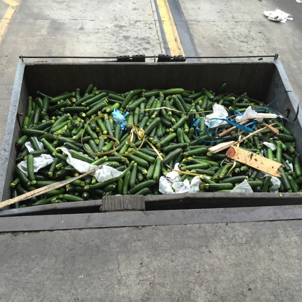 Squash in Dumpster