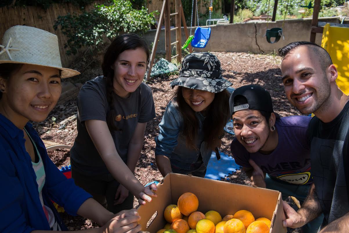 Taylor at a Food Forward Harvest