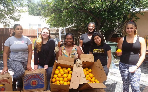 Pasadena Youth Build Harvests Fruit!